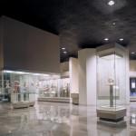 Cultura: MUSEO DE ANTROPOLOGÍA